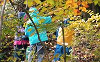 Kinder-Wald4